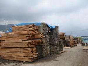 timber area